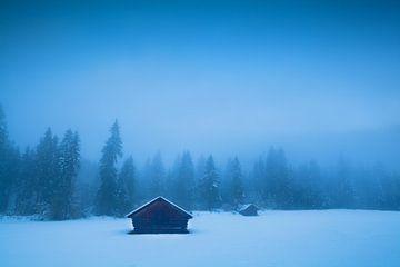 Mysterious winter von Olha Rohulya