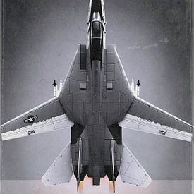 Düsenjäger - Grumman F-14A Tomcat von Stefan Witte