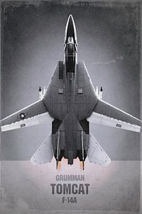 Avion de chasse - Grumman F-14A Tomcat