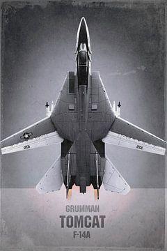 Straaljager - Grumman F-14A Tomcat van