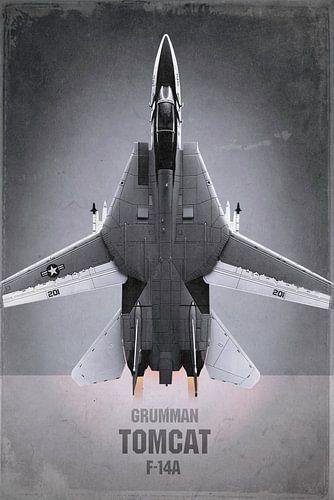 Straaljager - Grumman F-14A Tomcat