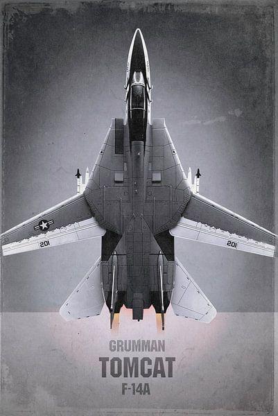Avion de chasse - Grumman F-14A Tomcat sur Stefan Witte