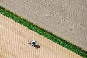 L'agriculture des champs