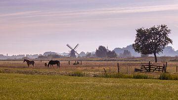 Mistige ochtend in Noorddijk Groningen van Marga Vroom