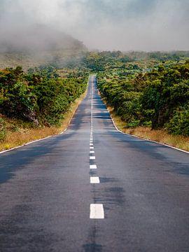 Road Trip von Alexander Dorn