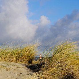 Caché derrière les dunes sur Ostsee Bilder