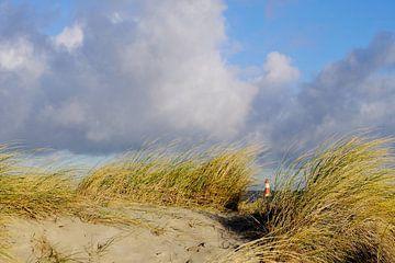 Verscholen achter de duinen van Ostsee Bilder