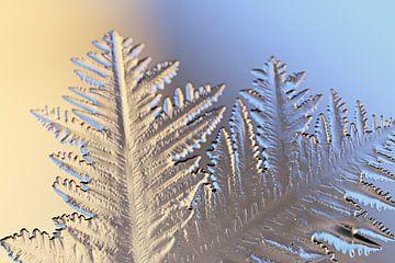christmastime! ( ice -art) von Els Fonteine