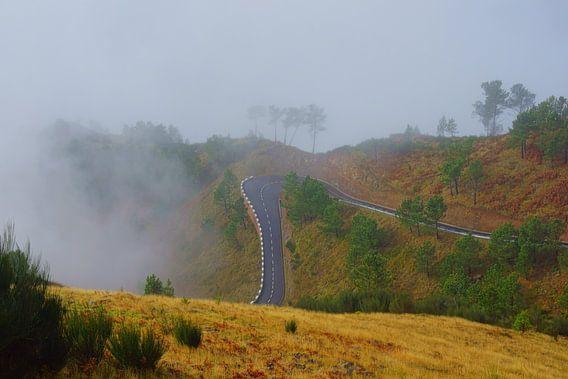 Bergweg, Madeira van Michel van Kooten