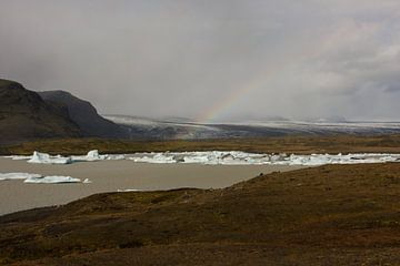 Fjallsarlon gletsjermeer von Louise Poortvliet