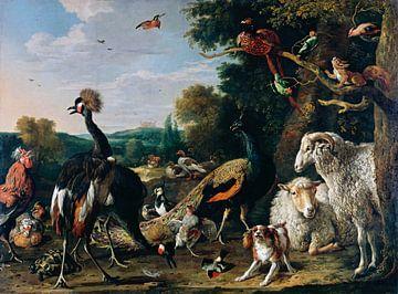 Dieren voor de Ark van Noach, Melchior d'Hondecoeter van