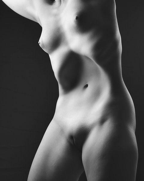 Nahaufnahme eines schönen nackten weiblichen Körpers #102 von william langeveld