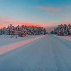 Zweden verlaten weg van Andy Troy