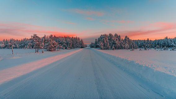 Zweden verlaten weg