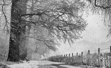 Winterlandschap in Nederland von Michel Van Zanten