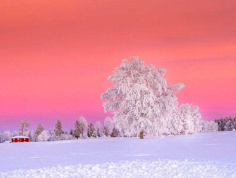 Een zonsondergang na een koude winterdag in Zweden van Hamperium Photography