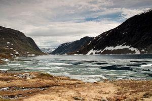 Ruig Noorwegen