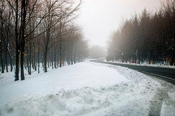 Schnee landschaft von