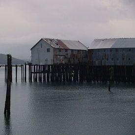 Cordova - Alaska  van Tonny Swinkels