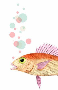 Something Fishy van Marja van den Hurk