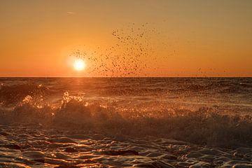 plätschernde Nordsee von anne droogsma
