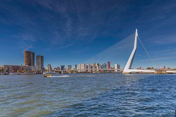 Pont Erasmus Rotterdam sur Angelique Niehorster