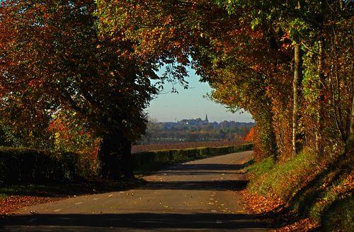 Herfst in Limburg van