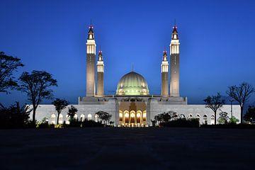 Moschee von Robert Styppa