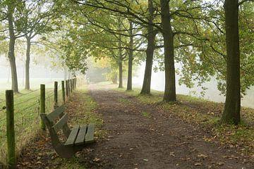 Herfstochtend langs de Kromme Rijn von Marijke van Eijkeren