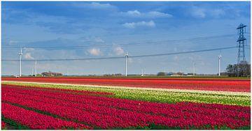 Lente von Robin Pics (verliefd op Utrecht)