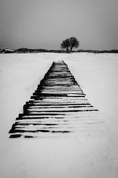 Brug in de Sneeuw van Erwin Plug