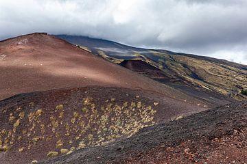 Ruig berglandschap op de hellingen van de Etna van Arie Storm