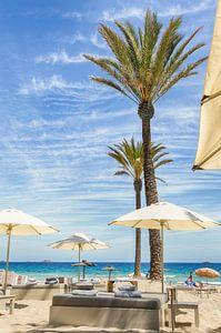 Beachclub Ibiza van