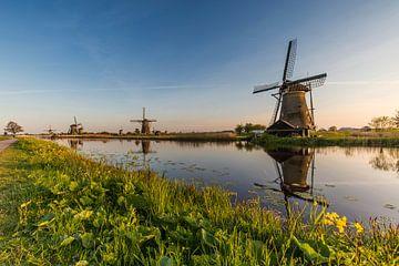 Schöne Mühlen an einem schönen Wasser in der Nähe von Kinderdijk von Paul Weekers Fotografie