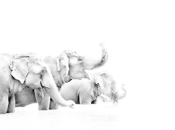 Olifanten in Nepal van Jeroen Kleverwal