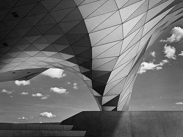 Musee des Confluences Lyon (Museum) von Desiree Tibosch