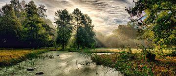 Arboretum. van Ro Rebbel