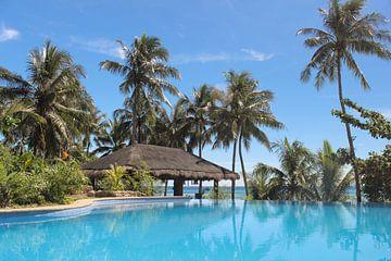 Swimmingpool mit Palmen und Bambushütte auf tropischer Insel von Robin Jongerden