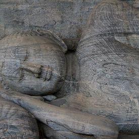 Sleeping Buddha van Gert-Jan Siesling