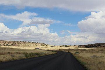 Autoweg in Verenigde Staten van Amerika von Martin van den Berg Mandy Steehouwer