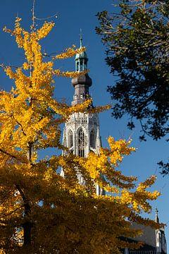 Toren Grote Kerk Breda in herfsttinten