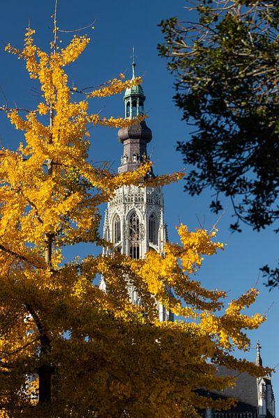 Toren Grote Kerk Breda in herfsttinten van JPWFoto