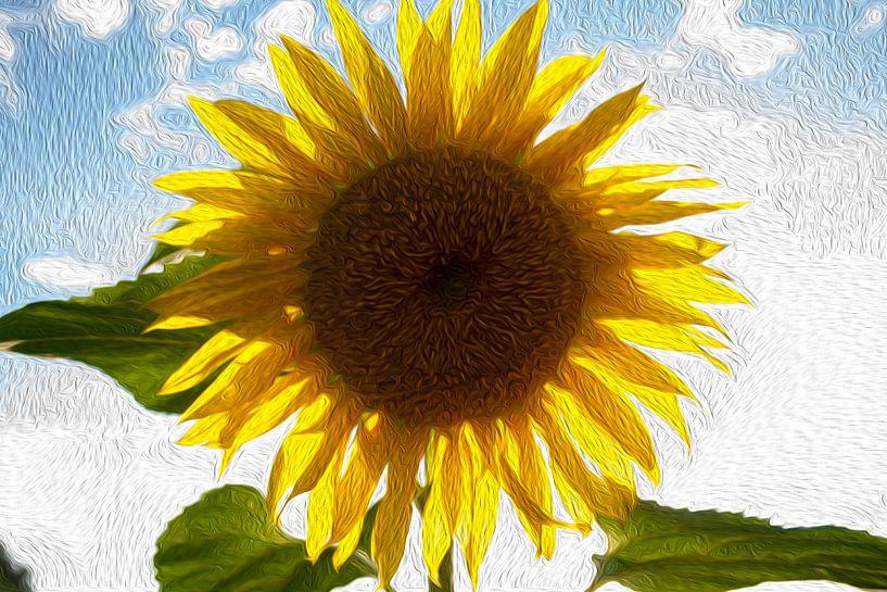 Zonne-licht van Susan Hol