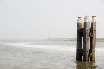 Texel Zeezicht 016 van Starworks Lien van der Star