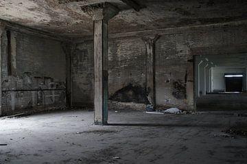 Oude Bruynzeel fabriek van Paula de Wit