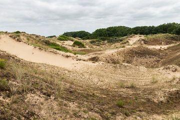 Dune du Peroquet