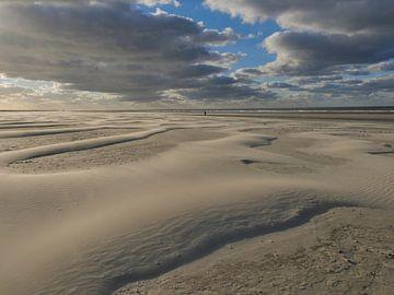 Verlassener Strand von Schiermonnikoog von Robin Jongerden