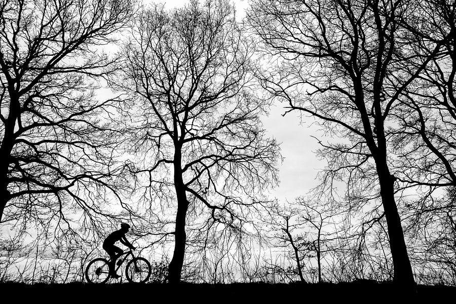 de eenzame fietser van jan van de ven