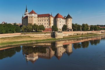 Hartenfels Castle, Torgau van