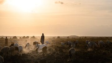 Kenia | White Mountain Movement 12 von Mariëlle de Valk